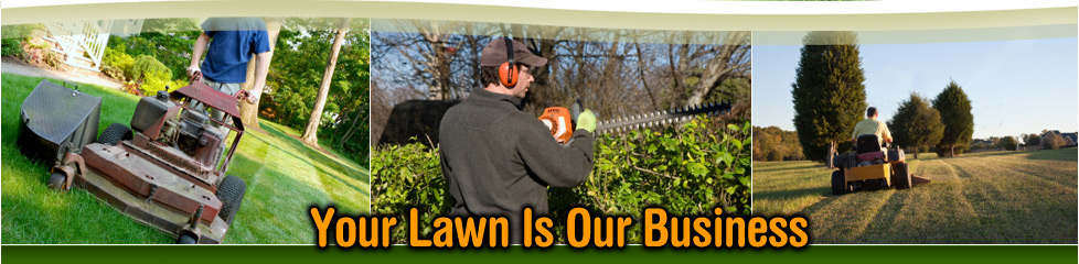 Bruce Lawn Lawn Landscaping
